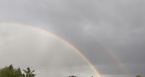 RAINBOW with Ronnie and Bill